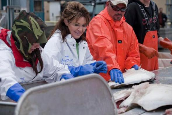 HOMER, ALASKA, AUGUST 06 2010: The day after she went fishing on the halibut boat Bear, Sarah Palin helps sort out the fish on the docks in Homer, the world's halibut fishing capital, from where it will be taken to a local fish processing plant (photo Gilles Mingasson/Getty Images).