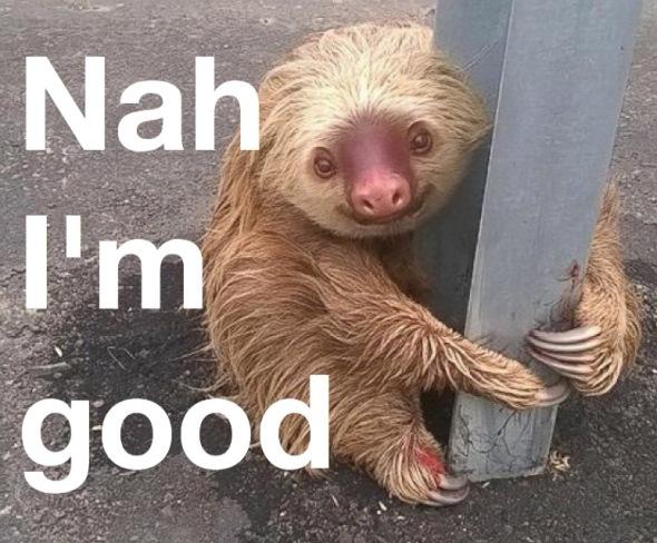sloth-2